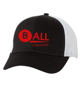 #493 Trucker Hat - BALL4Training