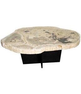 New Pacific Direct VENUS PETRIFIED COCKTAIL TABLE