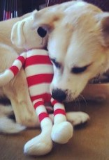 Gwen the Dog