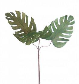 Botanica #790