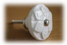 knob white wheel flower