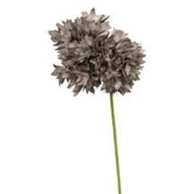 Fleurish Home Botanica 926