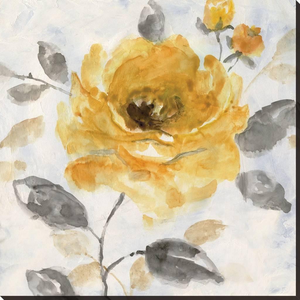 Fleurish Home Honey Rose I Wall Art 18x18
