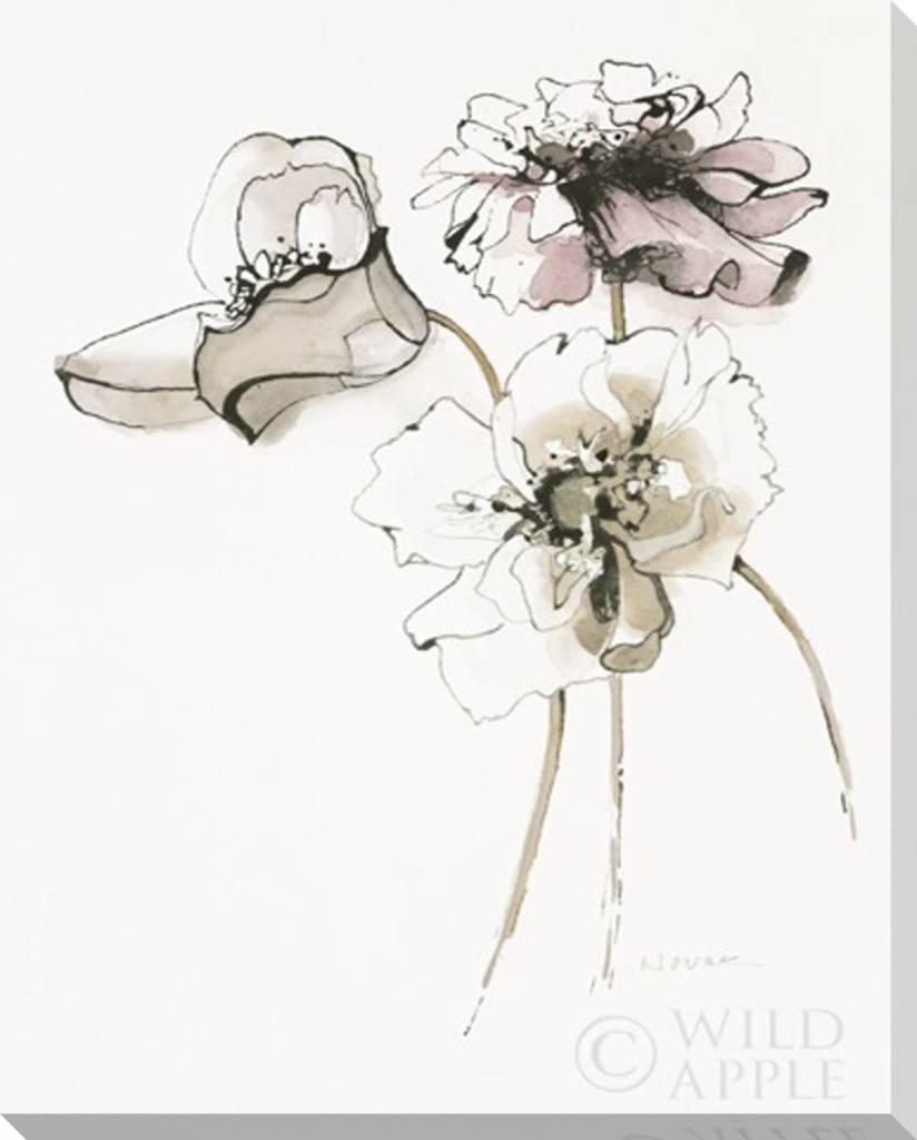 Three Somniferums Poppies Wall Art 16x20