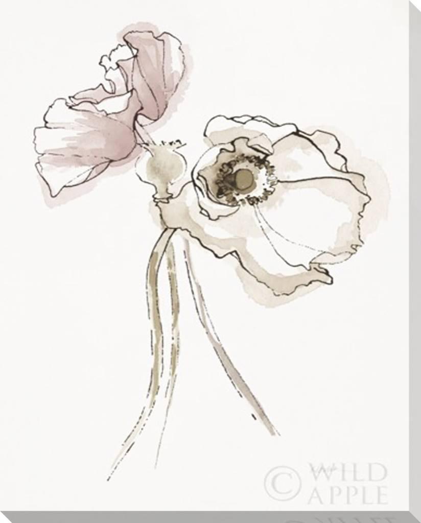 Fleurish Home Three Somniferums Poppies II Wall Art 16x20