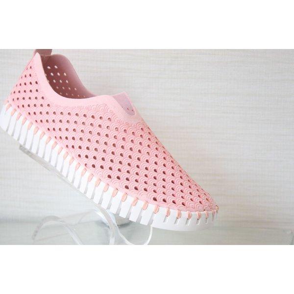 Isle Jacobsen Sneakers
