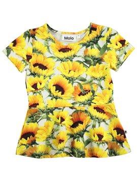molo RInah - Sunflower Fields