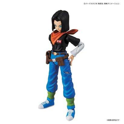BAN - Bandai Gundam 215638 Android #17 Dragon Ball  Bandai Figure-rise Standard