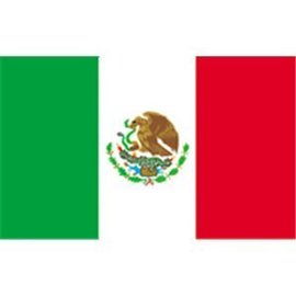 "Mexico  Flag 12"" x 18""  - Nylon"