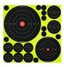 Birchwood Casey 34018, Shoot-N-C Targets, Variety Pack, 50 Targets, 50 Pasters
