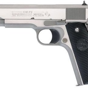 """Colt Government .45ACP 5"""" Stainless Steel WDS"""