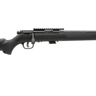 Savage Arms Savage Arms MKII FV-SR 22LR Blued Synthetic
