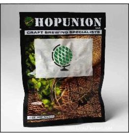 US Tettnang Leaf Hops 1oz