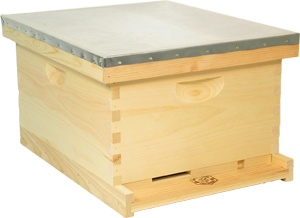 DO NOT USE 10 Frame Complete Hive w/Grooved BB Frames & IPM
