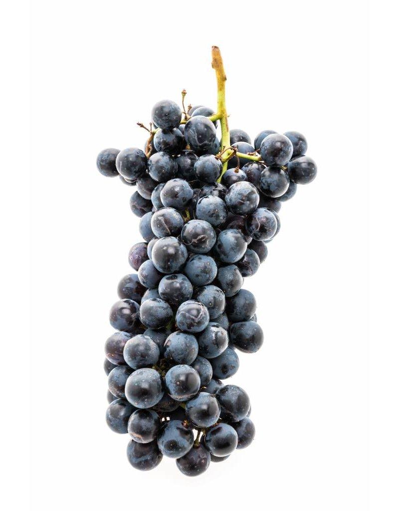 California Burgundy 6 Gal. Juice