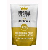 Imperial Yeast Imperial Yeast A20 - Citrus