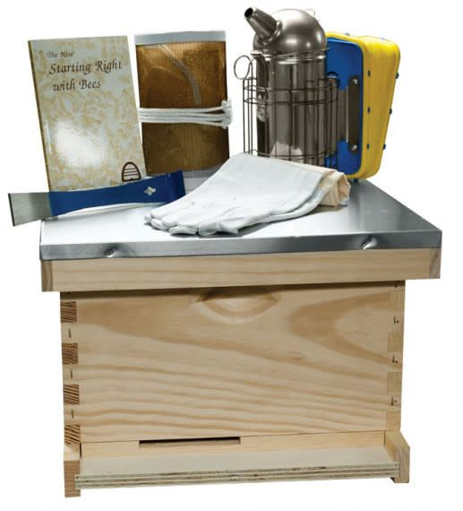 """10 Frame 9 5/8"""" (24.45 cm) Traditional Basic Starter Kit - Wood Frames"""