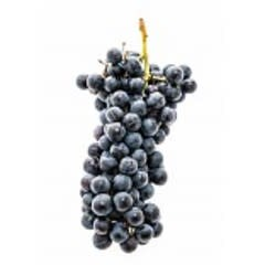 Italian Nebbiolo 6 Gal. Juice (Red)