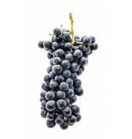2018 Italian Black Malvasia 6 Gal. Juice (Red)