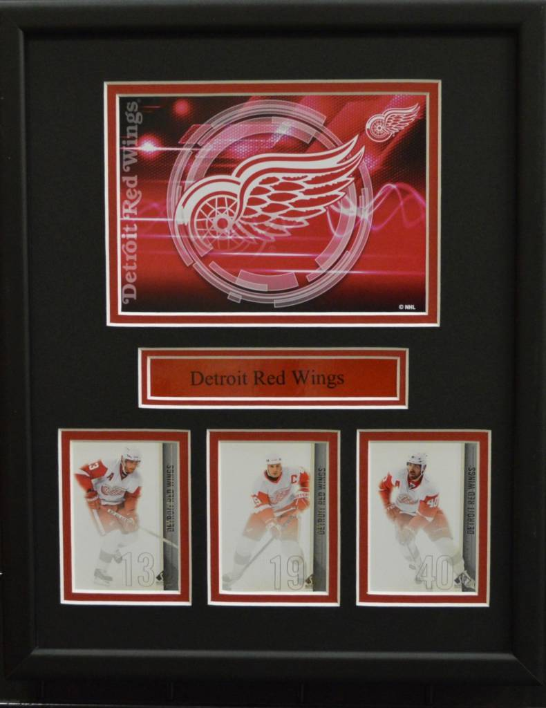 DETROIT RED WINGS POSTCARD 11X14 FRAME