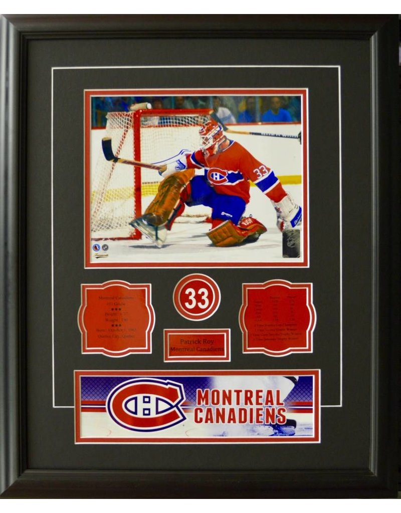 PATRICK ROY 16X20 FRAME - MONTREAL CANADIENS