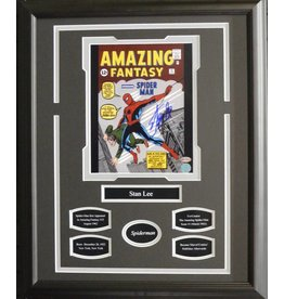 STAN LEE - SPIDERMAN AUTOGRAPH 16X20 FRAME