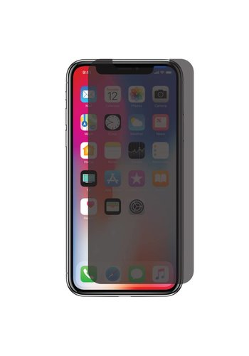 Privacy Matte Tempered Glass for iPhone X