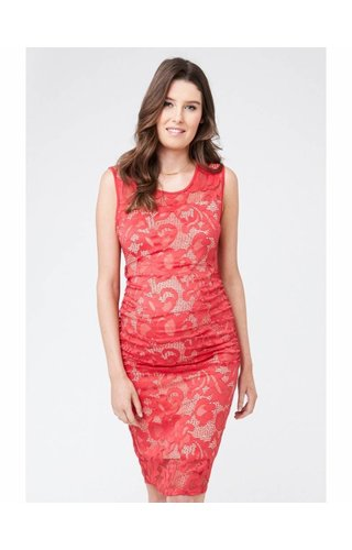 Ripe Eden Lace Dress