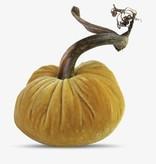 """6"""" Velvet Pumpkin"""