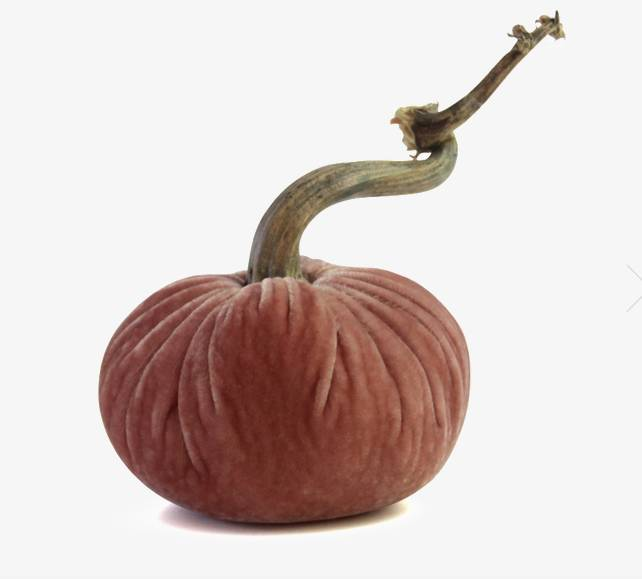 """5"""" Velvet Pumpkin"""