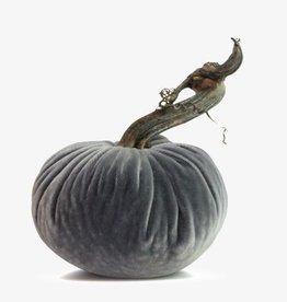 """Plush Pumpkin 5"""" Velvet Pumpkin"""