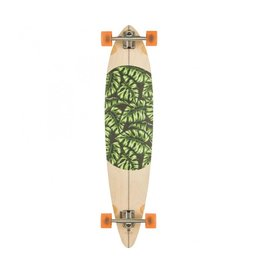GLOBE GLOBE MONSTERA PINTAIL 44""