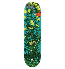 EASTERN SKATE ALL I NEED THRIVE DECK-8.1