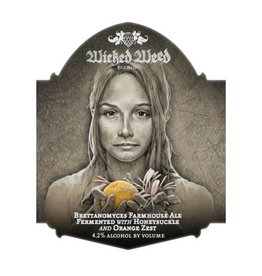 Wicked Weed 'Fille de Ferme' Tart Farmhouse Ale 500ml
