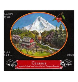 Logsdon 'Cerasus' Organic Kriek Ale 750ml
