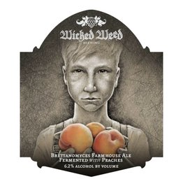 Wicked Weed 'Garcon de Ferme' Farmhouse Ale with Peaches 500ml