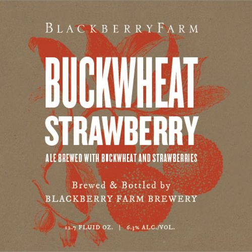 Blackberry Farm Buckwheat Strawberry Wild Farmhouse Ale 375 ml Br