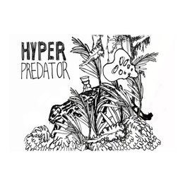 Off Color 'Hyper Predator' Coffee Farmhouse Ale 12oz Sgl