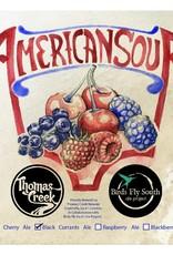 Birds Fly South x Thomas Creek 'American Sour: Black Currants' Ale 750ml