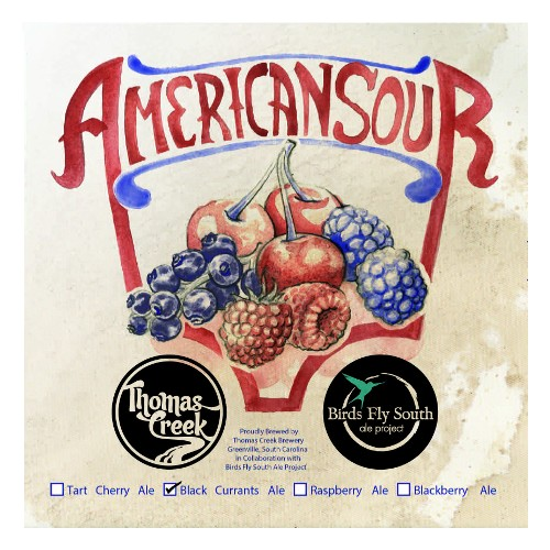 Birds Fly South x Thomas Creek 'American Sour: Black Currants' Ale 750ml