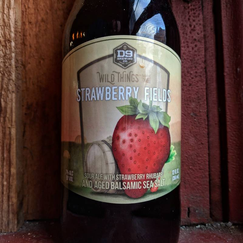 D9 'Strawberry Fields' Sour Ale 12oz Sgl