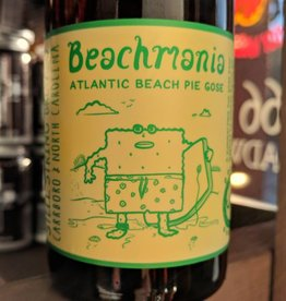 Steel String 'Beachmania' Gose 500ml