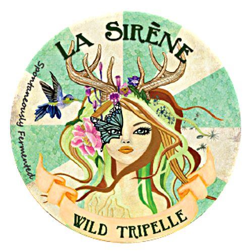 La Sirene 'Wild Tripelle' 375ml