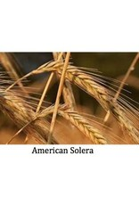 American Solera x Chimera Tulsa 'RyeMera' Kvass 750ml