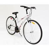 16 AVP HC 2000 Blanc/Rouge