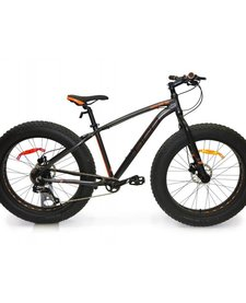 17 DCO Realfat Noir Fat bike Small