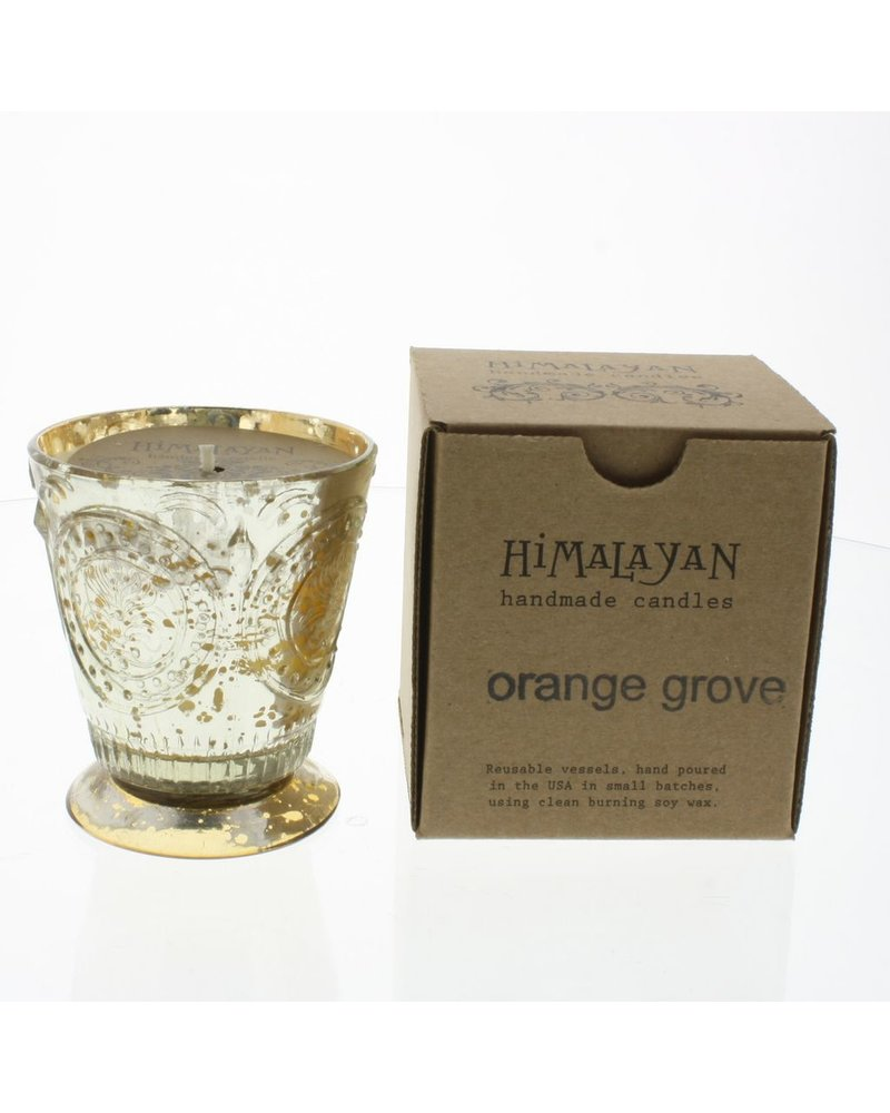 Fleur de Lys Orange Grove Soy Candle