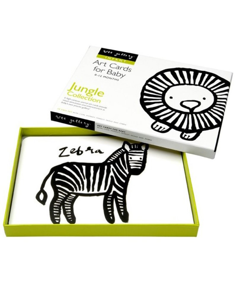 Jungle Collection Art Cards For Baby