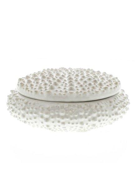 HomArt White Sea Urchin Round Ceramic Box - Sm