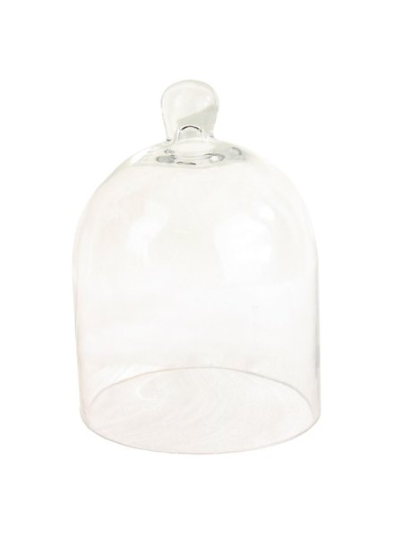 HomArt Glass Dome - Sm Clear